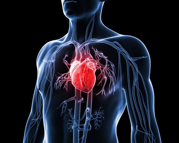 verdadeira causa de doença cardíaca
